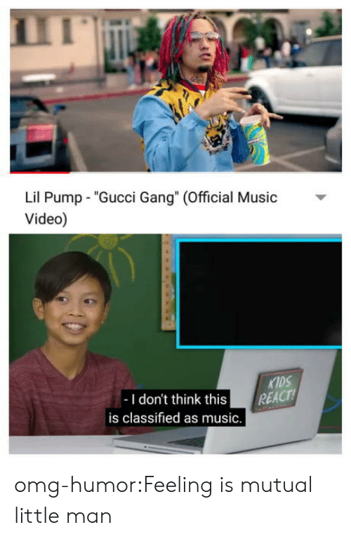 "Gucci, Music, and Omg: Lil Pump ""Gucci Gang"" (Official usic  Video)  KIDS  -I don't think this REACT  is classified as music. omg-humor:Feeling is mutual little man"