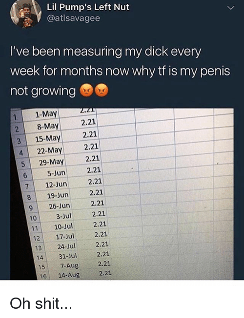 Memes, Shit, and Dick: Lil Pump's Left Nut  @atlsavagee  I've been measuring my dick every  week for months now why tf is my penis  not growing  1-May 2021  2 8-May .21  一  3 15-May 2.21  4 22-May 2.21  5 29-May 2.21  2.21  2.21  2.21  926-Jun 2.21  103-u .21  1110-Jul 2.21  6 5-Jun  712-Jun  819-Jun  2.21  2.21  1431-Jul2.21  15-Aug 2.21  12 17-Jul  13 24-Jul  16 14-Aug  2.21 Oh shit...