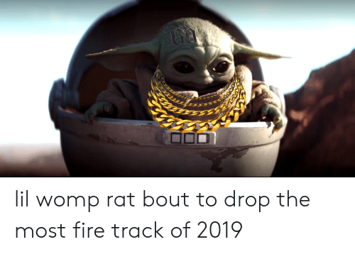Lil Womp Rat Bout To Drop The Most Fire Track Of 2019 Fire Meme On Me Me Originally posted by soullwell ok, so i was fighting womp rats on tatooine this evening, and i got infected with the womp rat fever! lil womp rat bout to drop the most fire