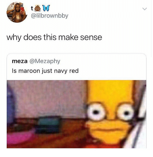 why does this make sense meza is maroon just navy red navy meme on