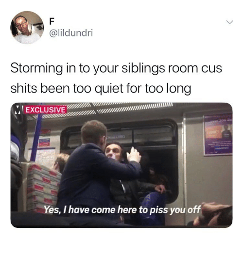 Quiet, Girl Memes, and Been: @lildundri  Storming in to your siblings room cus  shits been too quiet for too long  IEXCLUSIVE  Uuddmum uus  Yes, I have come here to piss you off