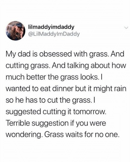 Dad, Dank, and Rain: lilmaddyimdaddy  @LilMaddylmDaddy  My dad is obsessed with grass. And  cutting grass. And talking about how  much better the grass looks. I  wanted to eat dinner but it might rain  so he has to cut the grass.I  suggested cutting it tomorrow.  Terrible suggestion if you were  wondering. Grass waits for no one.