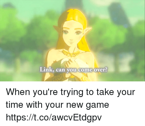 Come Over, Game, and Link: Link, can you come over? When you're trying to take your time with your new game https://t.co/awcvEtdgpv