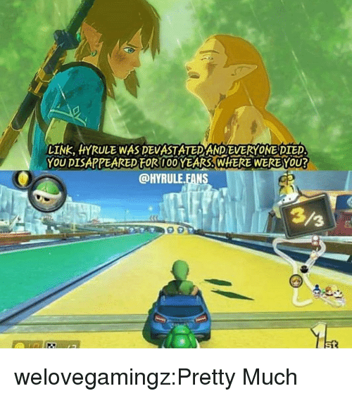 Tumblr, Blog, and Link: LINK, HYRULE WAS DEVASTATEDAND EVERYONE DIED  YOU DISAPPEAREP FORI00 YEARS WHERE WERE YOU?  @HYRULE.EANS  /3 welovegamingz:Pretty Much