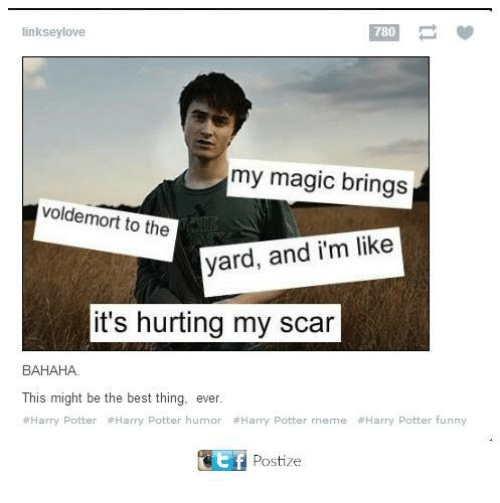 Funny, Harry Potter, and Love: linksey love  my magic brings  voldemort to the  yard, and i'm like  it's hurting my scar  BAHAHA.  This might be the best thing, ever.  Harry Potter #Harry Potter humor Harry Potter meme #Harry Potter funny  tf Postize