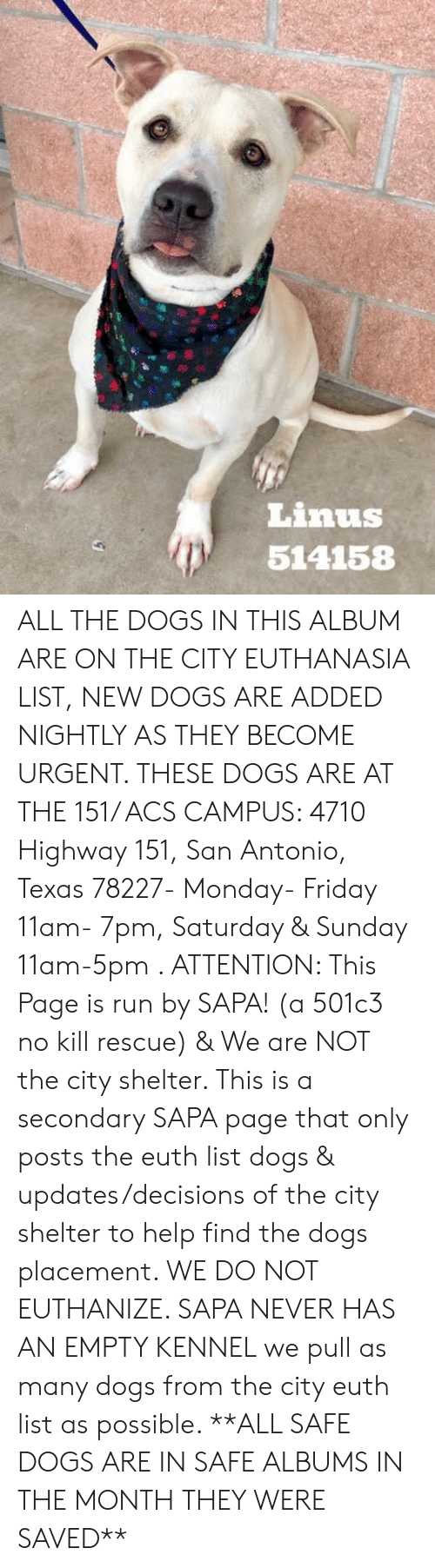 Dogs, Friday, and Memes: Linus  514158 ALL THE DOGS IN THIS ALBUM ARE ON THE CITY EUTHANASIA LIST, NEW DOGS ARE ADDED NIGHTLY AS THEY BECOME URGENT.  THESE DOGS ARE AT THE 151/ ACS CAMPUS: 4710 Highway 151, San Antonio, Texas 78227- Monday- Friday 11am- 7pm, Saturday & Sunday 11am-5pm  .                                                                                                                                                                                                                                                     ATTENTION: This Page is run by SAPA! (a 501c3 no kill rescue) & We are NOT the city shelter. This is a secondary SAPA page that only posts the euth list dogs & updates/decisions of the city shelter to help find the dogs placement. WE DO NOT EUTHANIZE.  SAPA NEVER HAS AN EMPTY KENNEL we pull as many dogs from the city euth list as possible.      **ALL SAFE DOGS ARE IN SAFE ALBUMS IN THE MONTH THEY WERE SAVED**