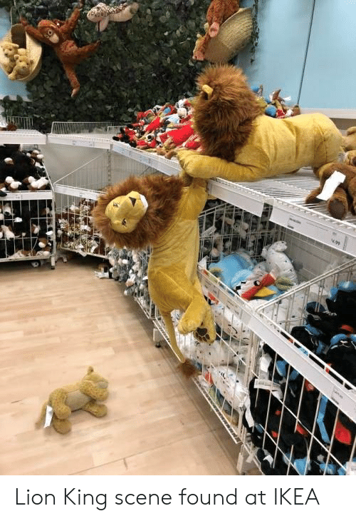 Ikea, Lion, and Lion King: Lion King scene found at IKEA