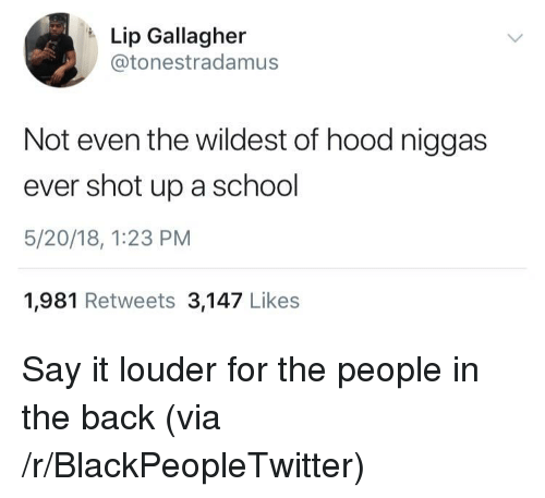 Blackpeopletwitter, School, and Say It: Lip Gallagher  @tonestradamus  Not even the wildest of hood niggas  ever shot up a school  5/20/18, 1:23 PM  1,981 Retweets 3,147 Likes <p>Say it louder for the people in the back (via /r/BlackPeopleTwitter)</p>