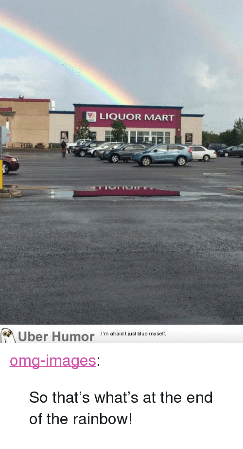 """Omg, Tumblr, and Uber: LIQUOR MART  Uber Humor 'm afraid just biue myet <p><a href=""""http://omg-images.tumblr.com/post/154244647519/so-thats-whats-at-the-end-of-the-rainbow"""" class=""""tumblr_blog"""">omg-images</a>:</p>  <blockquote><p>So that's what's at the end of the rainbow!</p></blockquote>"""