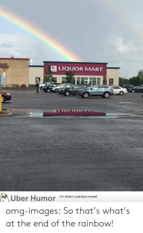 Omg, Tumblr, and Uber: LIQUOR MART  Uber Humor 'm afraid just biue myet omg-images:  So that's what's at the end of the rainbow!