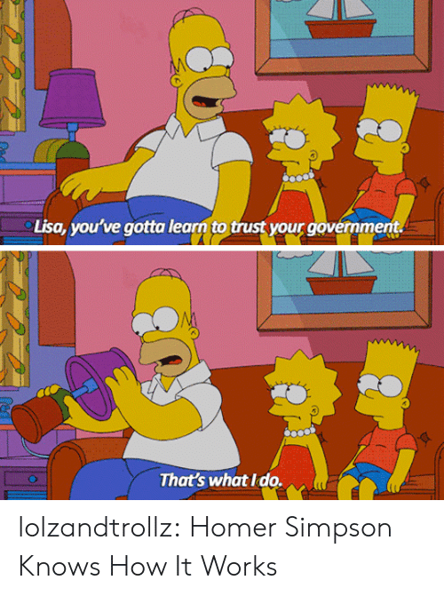 Homer Simpson, Tumblr, and Blog: Lisa, you've gotta learn to trust your government.  That's what Ido. lolzandtrollz:  Homer Simpson Knows How It Works
