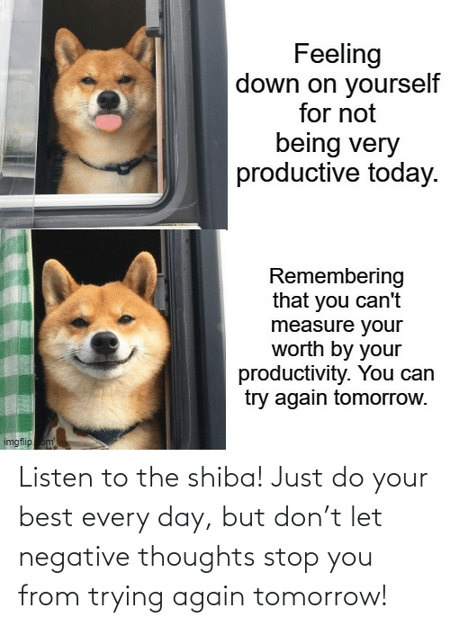 Best, Tomorrow, and Don: Listen to the shiba! Just do your best every day, but don't let negative thoughts stop you from trying again tomorrow!