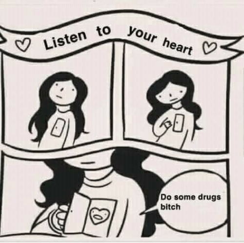 Bitch, Drugs, and Heart: Listen to your heart  Do some drugs  bitch