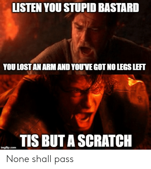 Lost, Scratch, and Dank Memes: LISTEN YOU STUPID BASTARD  YOU LOST AN ARM AND YOUVE GOT NO LEGS LEFT  TIS BUT A SCRATCH  imgflip.com None shall pass