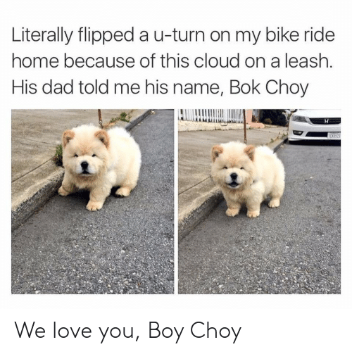 Dad, Love, and Cloud: Literally flipped a u-turn on my bike ride  home because of this cloud on a leash.  His dad told me his name, Bok Choy We love you, Boy Choy