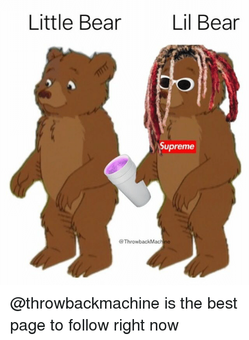Memes, Supreme, and Bear: Little Bear  Lil Bear  Supreme  @ThrowbackMa @throwbackmachine is the best page to follow right now