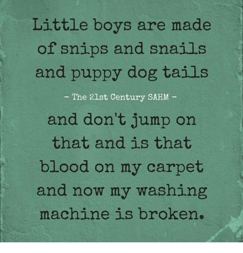 Memes, Puppy, and Boys: Little boys are made  of snips and snails  and puppy dog tails  - The 21st Century SAHM  and don't jump on  that and is that  blood on my carpet  and now my washing  machine is broken.