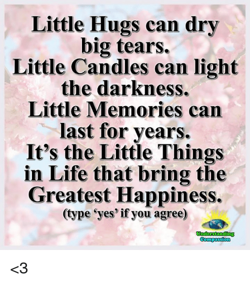 Life, Memes, and Candles: Little Hugs can dry  big tears.  Little Candles can light  the darkness.  Little Memories can  last for years.  It's the Little Things  in Life that bring the  Greatest Happiness.  type eyes if you agree)  Compassion <3