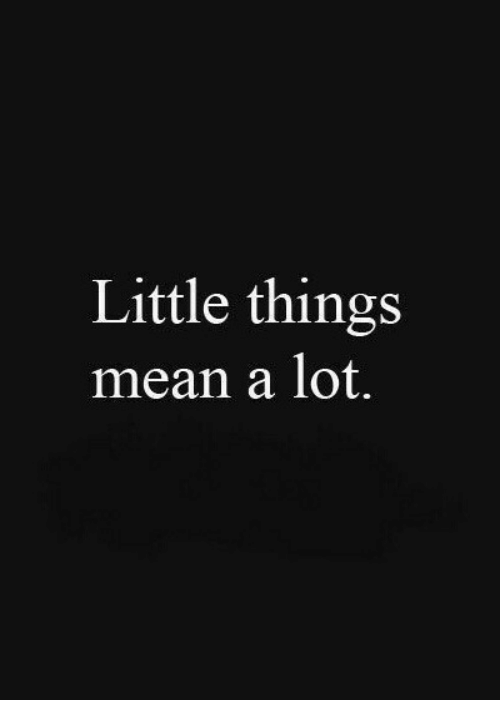 little things mean a lot quotes