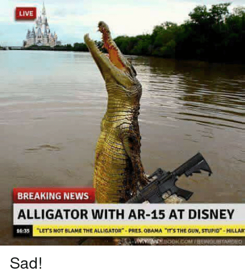 Live Breaking News Alligator With Ar 15 At Disney 635 Lets Not