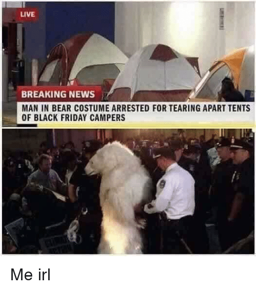 Black Friday, Friday, and News: LIVE  BREAKING NEWS  MAN IN BEAR COSTUME ARRESTED FOR TEARING APART TENTS  OF BLACK FRIDAY CAMPERS Me irl