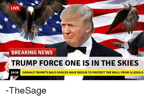 Donald Trump, News, and Break: LIVE  BREAKING NEWS  TRUMP FORCE ONE IS IN THE SKIES  DONALD TRUMP's BALD EAGLES HAVE BEGUN TO PROTECT THE WALL FROM ILLEGALS  19:58 -TheSage