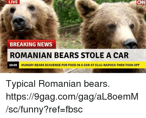 9gag, Dank, and Food: LIVE  CAN  BREAKING NEWS  ROMANIAN BEARS STOLE A CAR  19:05  HUNGRY BEARS SCAVENGE FOR FOOD IN A CAR AT CLUJ-NAPOCA THEN TOOK OFF Typical Romanian bears.  https://9gag.com/gag/aL8oemM/sc/funny?ref=fbsc