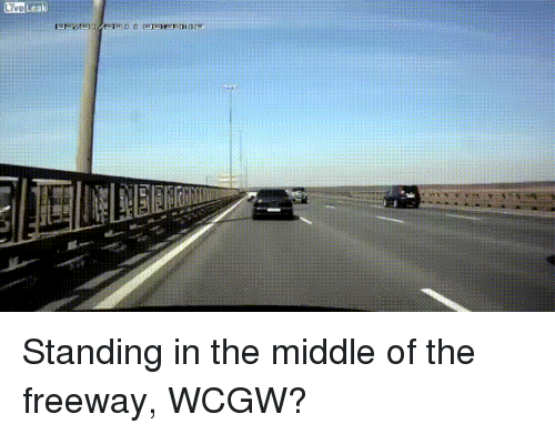 Live Leak Standing in the Middle of the Freeway WCGW?   Live Meme on