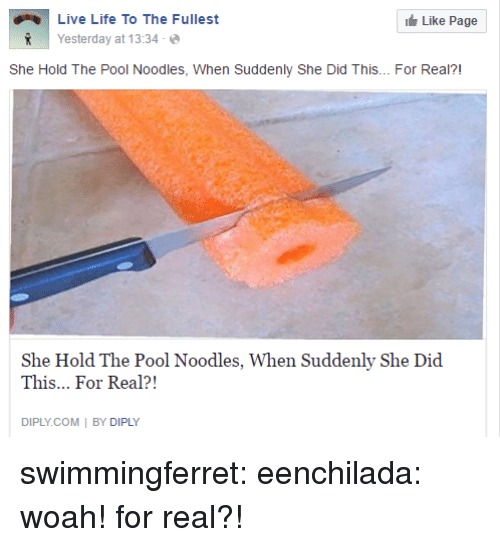 Bailey Jay, Gif, and Life: Live Life To The Fullest  İ Yesterday at 13:34-@  Like Page  R  She Hold The Pool Noodles, When Suddenly She Did This... For Real?!  She Hold The Pool Noodles, When Suddenly She Did  This... For Real?!  DIPLY.COM | BY DIPLY swimmingferret:  eenchilada: woah! for real?!