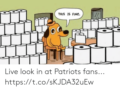 Football, Nfl, and Patriotic: Live look in at Patriots fans... https://t.co/sKJDA32uEw