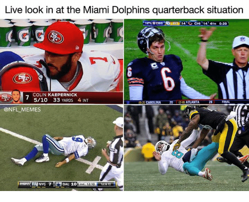 live look in at the miami dolphins quarterback situation 14 26732808 ✅ 25 best memes about miami dolphins miami dolphins memes
