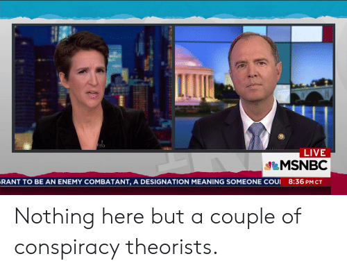 Live, Meaning, and Msnbc: LIVE  MSNBC  RANT TO BE AN ENEMY COMBATANT, A DESIGNATION MEANING SOMEONE COUI 8:36 PM CT Nothing here but a couple of conspiracy theorists.