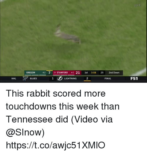 National Hockey League (NHL), Sports, and Lightning: LIVE  OREGON 42 7 23 STANFORD 42 21 1st 3:08 25 2nd Down  2  FS1  NHL  BLUES  LIGHTNING  FINAL This rabbit scored more touchdowns this week than Tennessee did  (Video via @SInow)  https://t.co/awjc51XMlO