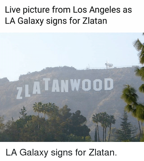 Memes, Live, and Los Angeles: Live picture from Los Angeles as  LA Galaxy signs for Zlatan  ATANWOOD LA Galaxy signs for Zlatan.