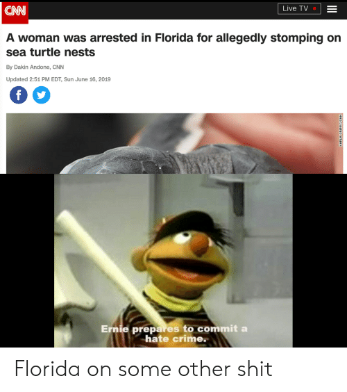 cnn.com, Crime, and Reddit: Live TV  CAN  A woman was arrested in Florida for allegedly stomping on  sea turtle nests  By Dakin Andone, CNN  Updated 2:51 PM EDT, Sun June 16, 2019  f  Ernie prepares to commit  hate crime.  KARLA CRIPPSPCNN Florida on some other shit