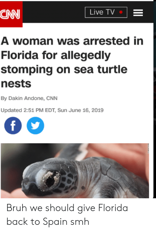 Bruh, cnn.com, and Reddit: Live TV  CAN  A woman was arrested in  Florida for allegedly  stomping on sea turtle  nests  By Dakin Andone, CNN  Updated 2:51 PM EDT, Sun June 16, 2019 Bruh we should give Florida back to Spain smh