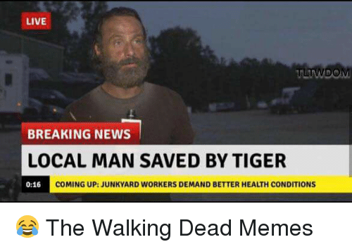 live twdom breaking news local man saved by tiger coming 18601835 ✅ 25 best memes about the walking dead memes the walking dead,Walking Meme