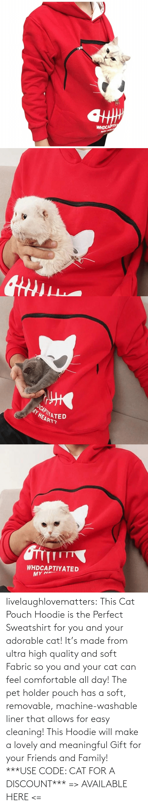 Comfortable, Family, and Friends: livelaughlovematters: This Cat Pouch Hoodie is the Perfect Sweatshirt for you and your adorable cat! It's made from ultra high quality and soft Fabric so you and your cat can feel comfortable all day!The pet holder pouch has a soft, removable, machine-washable liner that allows for easy cleaning! This Hoodie will make a lovely and meaningful Gift for your Friends and Family! ***USE CODE: CATFOR A DISCOUNT*** => AVAILABLE HERE <=