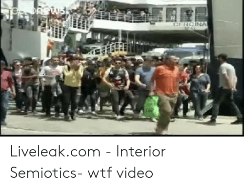 Liveleakcom - Interior Semiotics- Wtf Video | Liveleak Meme on ME ME
