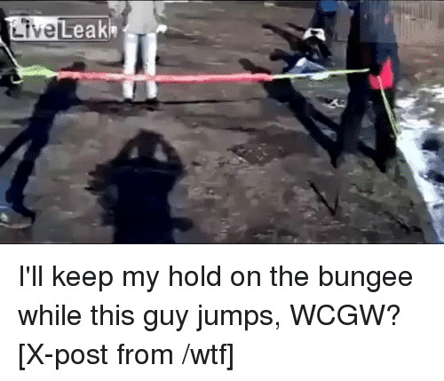 LiveLeak I'll Keep My Hold on the Bungee While This Guy Jumps WCGW