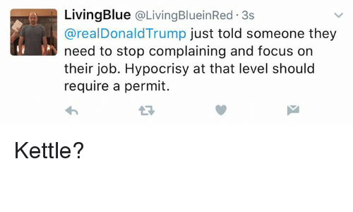 Memes, Focus, and Hypocrisy: Living Blue Living BlueinRed 3s  arealDonald Trump just told someone they  need to stop complaining and focus on  their job. Hypocrisy at that level should  require a permit. Kettle?
