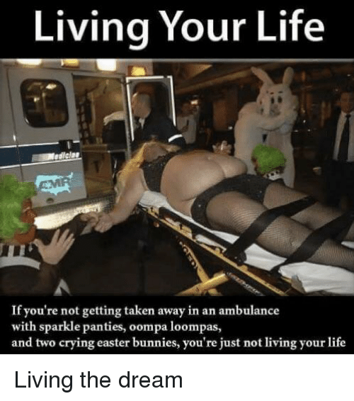Bunnies, Crying, and Easter: Living Your Life  edlela  If you're not getting taken away in an ambulance  with sparkle panties, oompa loompas,  and two crying easter bunnies, you're just not living your life