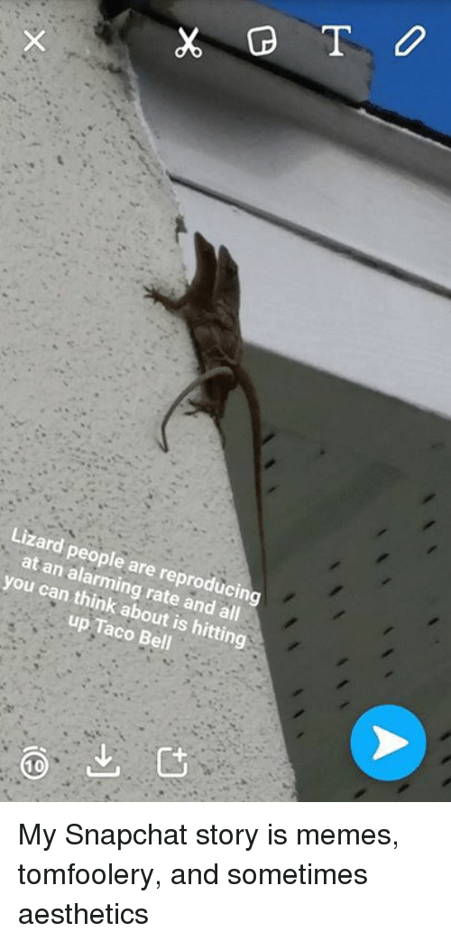 Lizard People Are An Reproducing You Can Think About Is Hitting