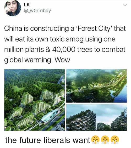 Future, Global Warming, and Memes: LK  @_wOrmboy  China is constructing a 'Forest City' that  will eat its own toxic smog using one  million plants & 40,000 trees to combat  global warming. Wow the future liberals want😤😤😤