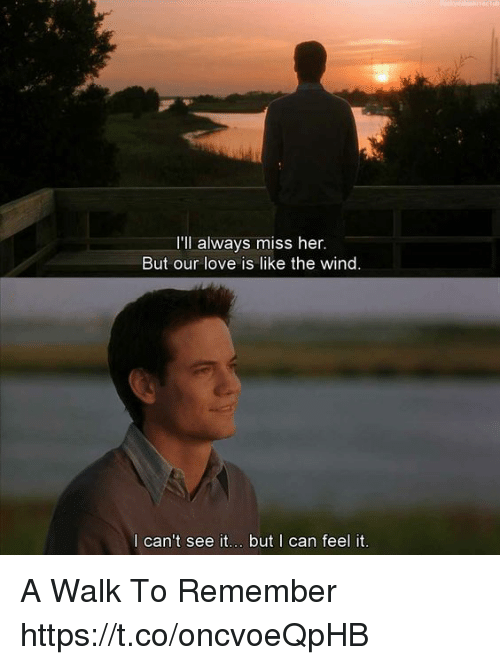 Love, Memes, and 🤖: 'll always miss her,  But our love is like the wind  l can't see it... but I can feel it. A Walk To Remember https://t.co/oncvoeQpHB