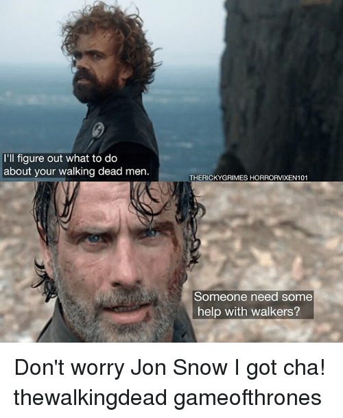 Memes, Jon Snow, and Help: 'll figure out what to do  about your walking dead men  THERICKYGRIMES HORRORVIXEN101  Someone need some  help with walkers? Don't worry Jon Snow I got cha! thewalkingdead gameofthrones