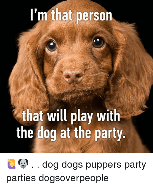 Dogs, Memes, and Party: l'm that person  that will play with  the dog at the party 🙋🐶 . . dog dogs puppers party parties dogsoverpeople