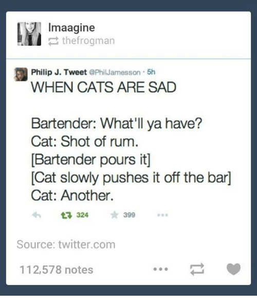 Cats, Dank, and Twitter: lmaagine  thefrogman  a Philip J. Tweet  PhilJamesson 5h  WHEN CATS ARE SAD  Bartender: What'll ya have?  Cat: Shot of rum.  [Bartender pours itl  Cat slowly pushes it off the bard  Cat: Another.  324  Source: twitter.com  112,578 notes