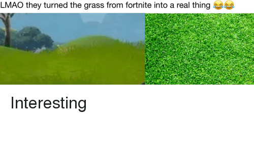 LMAO They Turned the Grass From Fortnite Into a Real Thing | LMAO