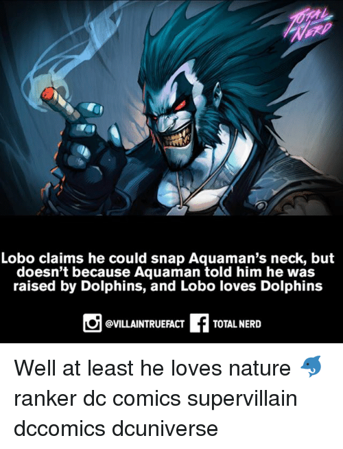 Memes, Nerd, and Dolphins: Lobo claims he could snap Aquaman's neck, but  doesn't because Aquaman told him he was  raised by Dolphins, and Lobo loves Dolphins  @VILLAINTRUEFACT  TOTAL NERD Well at least he loves nature 🐬 ranker dc comics supervillain dccomics dcuniverse